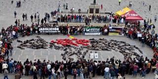 Action anticorrida spectaculaire à Bogota (Colombie)
