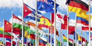 30 Millions d'Amis relaie l'appel de l'ONU
