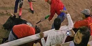 L'ONU prend de nouveau position contre la violence des corridas!