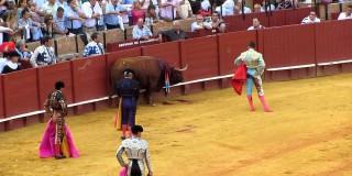La catalogne espagnole confirme son opposition à la corrida!