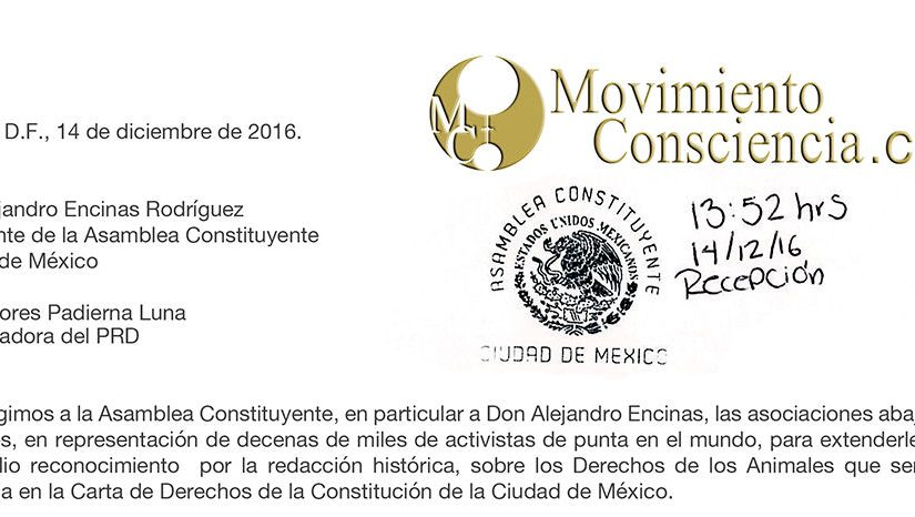 Des organisations animalistes internationales s'adressent au président de l'Assemblée Constituante de Mexico