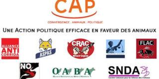 La FLAC et No Corrida suivent le CAP