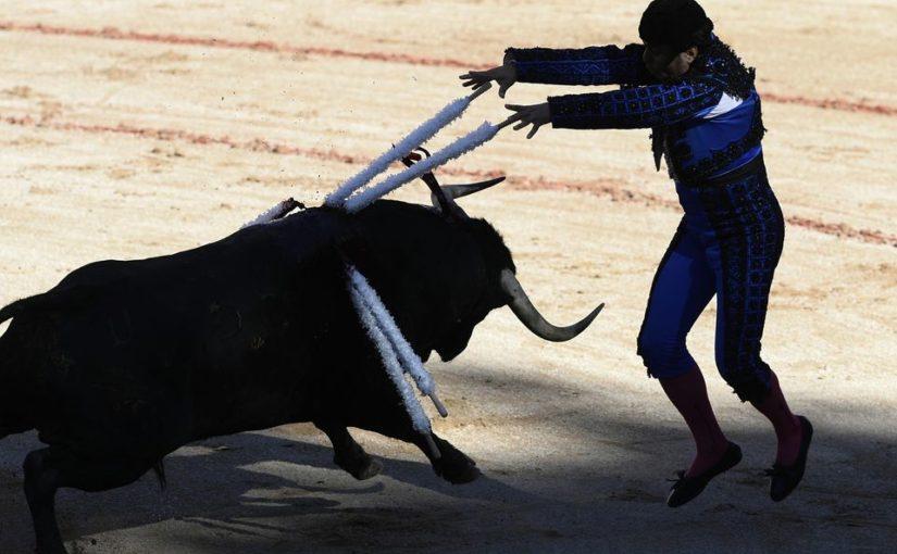 La SPA, membre de la FLAC, attaque la corrida en justice!