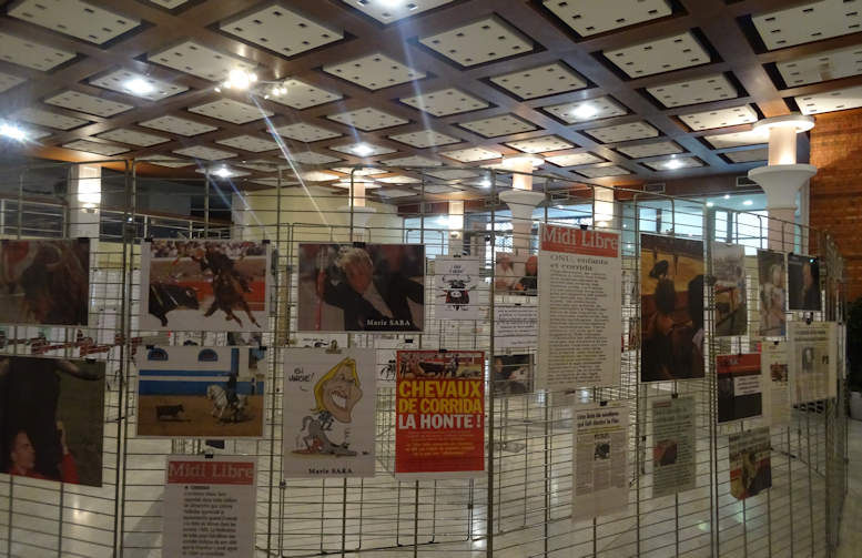 Double succès pour l'exposition anticorrida « L'autre réalité de la corrida » à Béziers