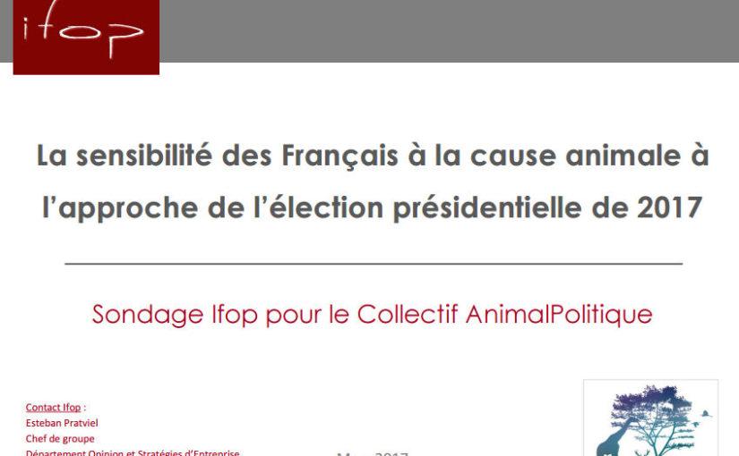 Présidentielle 2017: 39% des électeurs voteraient en fonction du programme des candidats en faveur des animaux