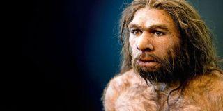 Non, Cro-Magnon et Néandertal ne sont pas les premiers toreros!